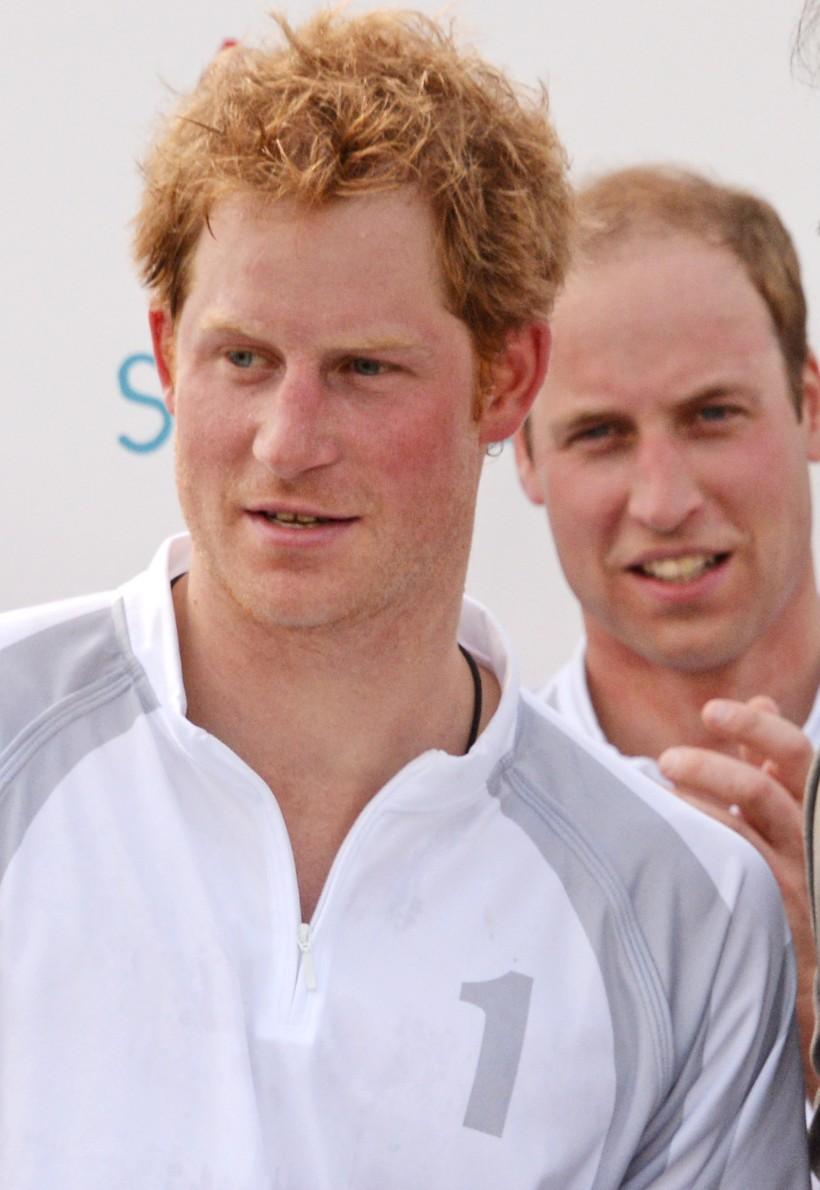 Prince William and Prince Harry Audi Polo Challenge 2014 (2)