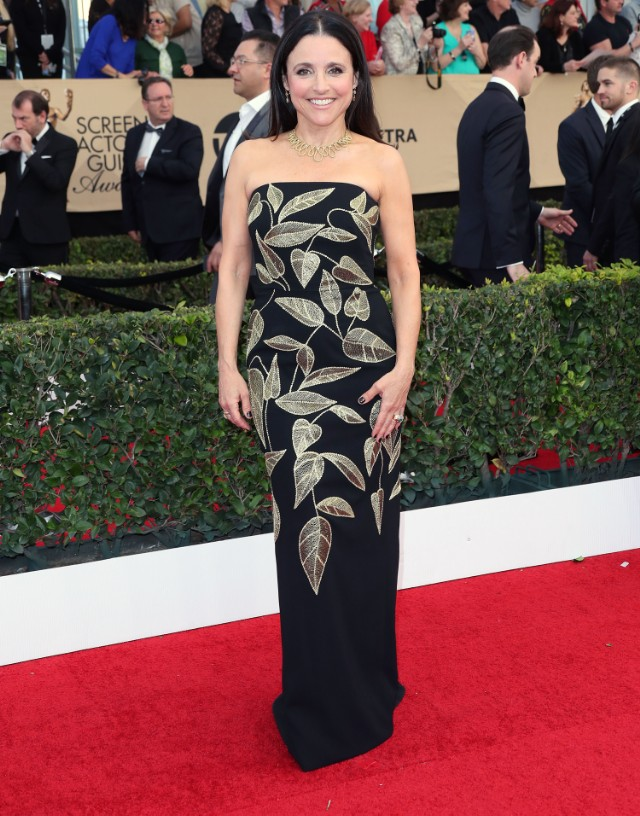 The 23rd Annual Screen Actors Guild Awards - Arrivals in LA