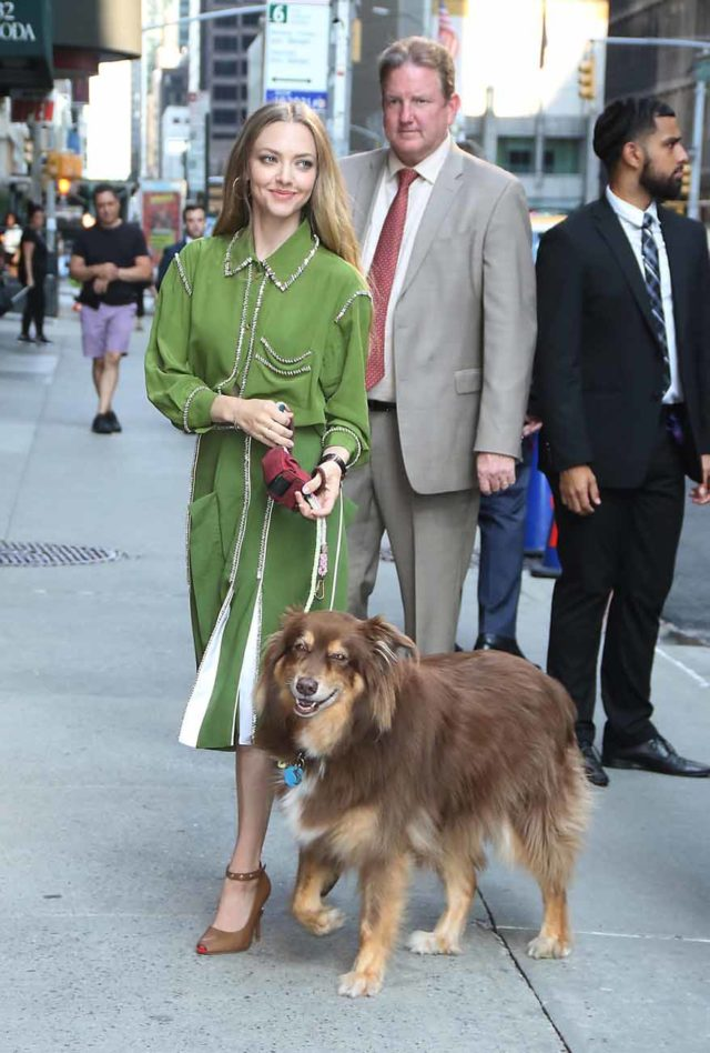 Amanda Seyfried Brings her dog Finn to The Late Show With Stephen Colbert