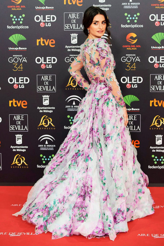 34th Goya Awards, Jose Maria Martin Carpena Sports Palace, Malaga, Spain - 25 Jan 2020